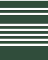 Scholarship Stripe Wallpaper Green by