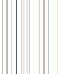 Wide Pinstripe Wallpaper Blue Coral by