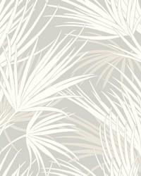 Palmetto Wallpaper Gray by