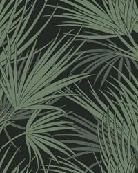 Palmetto Wallpaper Black Green by