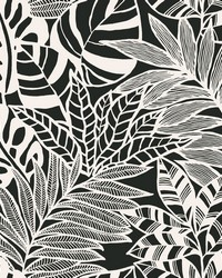 Jungle Leaves Wallpaper Black White by
