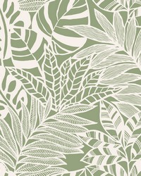 Jungle Leaves Wallpaper Green by