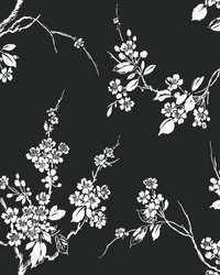 Imperial Blossoms Branch Wallpaper Black White by
