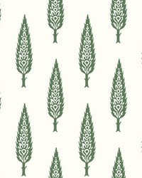 Juniper Tree Wallpaper Green by