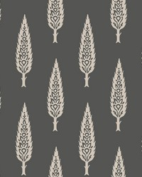 Juniper Tree Wallpaper Black Taupe by