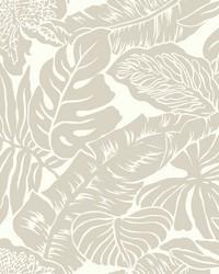 Valdivian Wallpaper  Metallics by