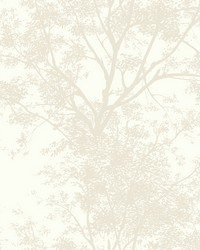 Tree Silhouette Sidewall Wallpaper  White Off Whites by