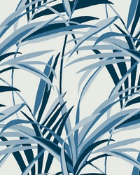 Tropical Paradise Wallpaper Blue White by