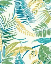 Tropical Toss Wallpaper Aqua Yellow by
