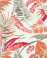 Tropical Toss Wallpaper Coral Beige by