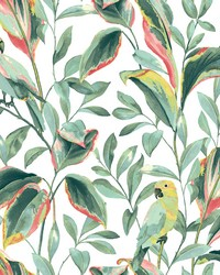 Tropical Love Birds Wallpaper White Coral by