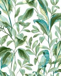 Tropical Love Birds Wallpaper White Aqua by