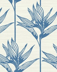 Bird Of Paradise Wallpaper Blue by