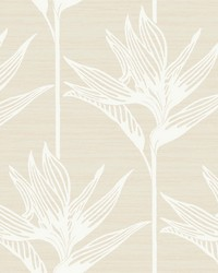 Bird Of Paradise Wallpaper White by
