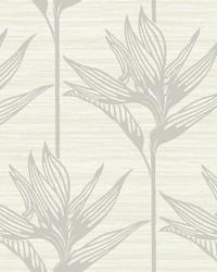 Bird Of Paradise Wallpaper Gray by