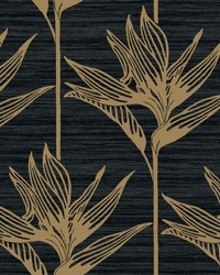 Bird Of Paradise Wallpaper Black Gold by