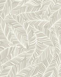Rainforest Canopy Wallpaper Glint by