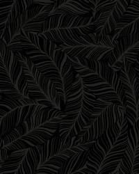 Rainforest Canopy Wallpaper Black by
