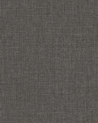 Well Suited Wallpaper Blacks by