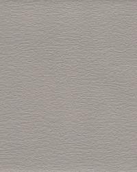 Texture & Trowel Wallpaper Blacks by