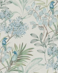 Handpainted Songbird Wallpaper Turquiose by