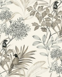 Handpainted Songbird Wallpaper Gray by