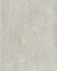 Limewash Wallpaper Bone by