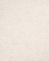 Vellum Wallpaper Crush by