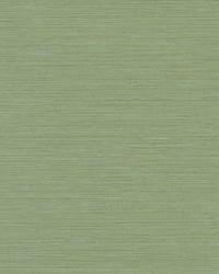 Fine Line Wallpaper Green by