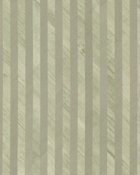 Grass Wood Stripe Wallpaper Greens by
