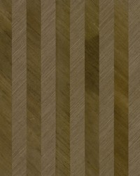 Grass Wood Stripe Wallpaper Browns by