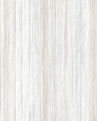 Painted Stripe Wallpaper White by