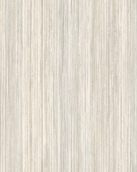 Painted Stripe Wallpaper Taupe by