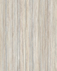 Painted Stripe Wallpaper Grey by