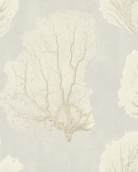 Coral Couture Wallpaper Tan by