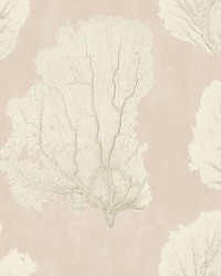 Coral Couture Wallpaper Pink  by