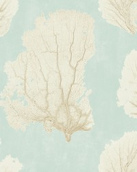 Coral Couture Wallpaper Blue by