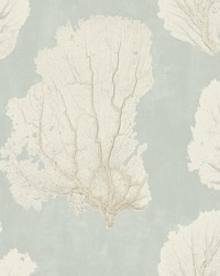 Coral Couture Wallpaper Grey by