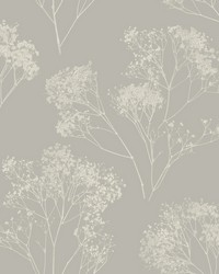 Boho Bouquet Wallpaper Taupe  by