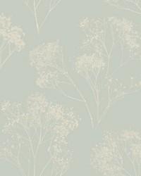 Boho Bouquet Wallpaper Grey by