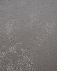 Stardust Wallpaper Grey by