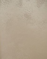 Stardust Wallpaper Taupe by