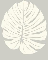 Bali Leaf Wallpaper Grey by