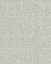 Entwined Wallpaper Grey by