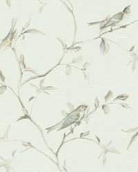 Birds of a Feather Wallpaper  Blues by