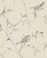 Birds of a Feather Wallpaper  Beiges by