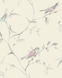 Birds of a Feather Wallpaper  Browns by