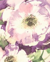 Watercolor Poppy 23 Purple Wallpaper WT4502 by