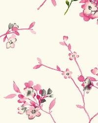 Soft Blossoms 14 Pink Wallpaper WT4534 by