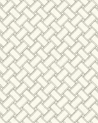 Basket 21 Gray Wallpaper WT4596 by